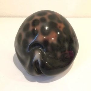Vintage Accents - Large Wooden Cowrie Shell